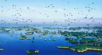 【A线:沙湖、影视城、岩画、枸杞园】一日游