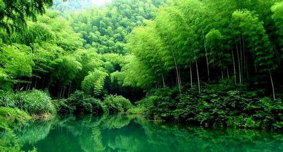【成都、青城山、都江堰、蜀南竹海品质双卧8日游】